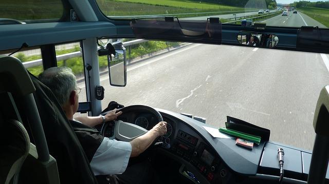 řidič autobusu.jpg