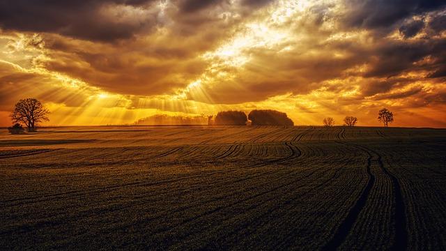 paprsky zapadajícího slunce.jpg