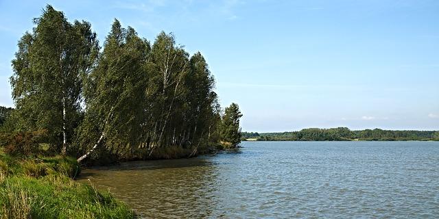 rybník v Čechách